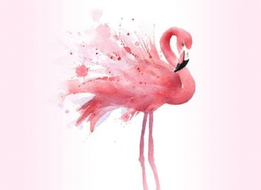 Flamingo Party, DJ set con Don Franco